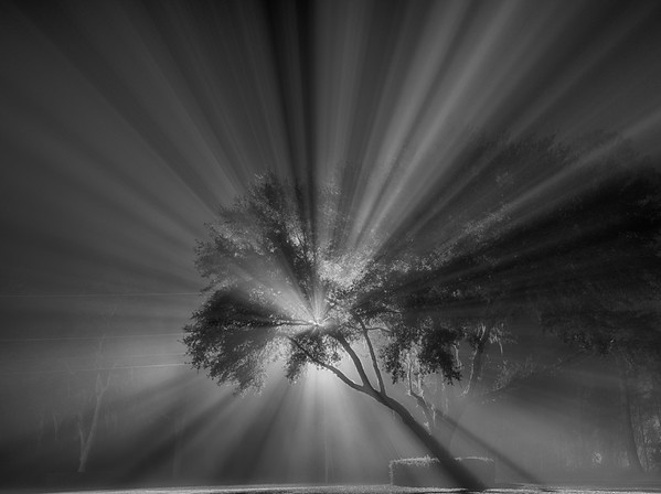 A little hope on a foggy night