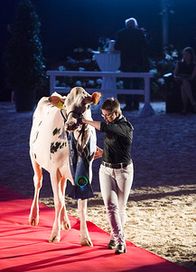 lu-bergamo-mccoy_champion-daughtergroups-180222_0001