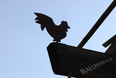 Weather vane of a chicken perched on a beam taken at the Camelback Inn in Scottsdale Arizona.