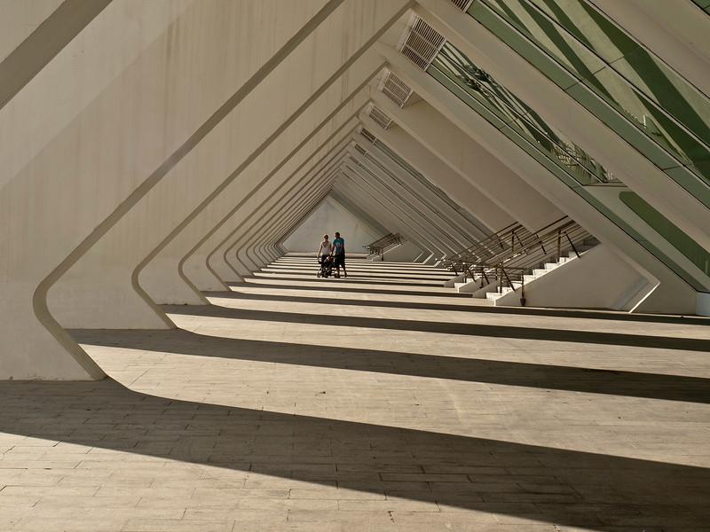 Science Museum, Valencia