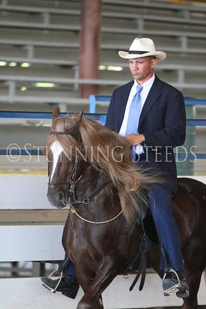 116 Pleasure Stallions