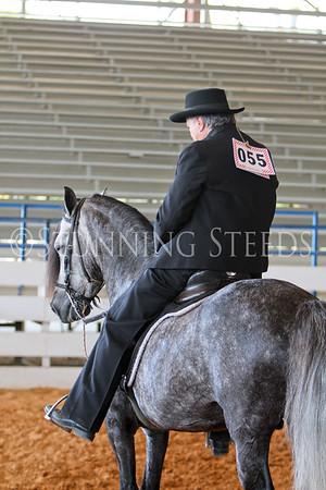 142 Fino AO Stallion Championship