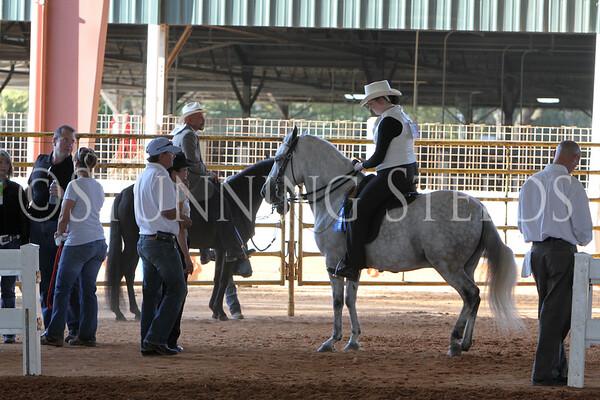 166 Pleasure AO Stallions