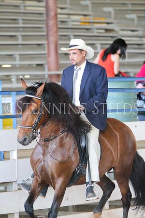 216 Pleasure Stallions