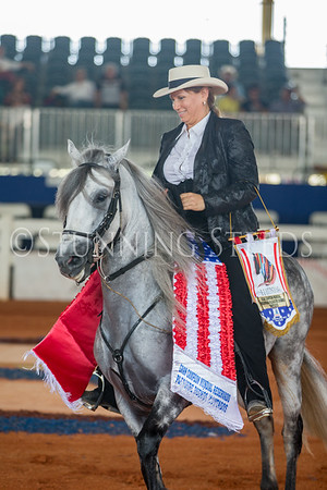 125-AO-Pleasure Stallion Championship