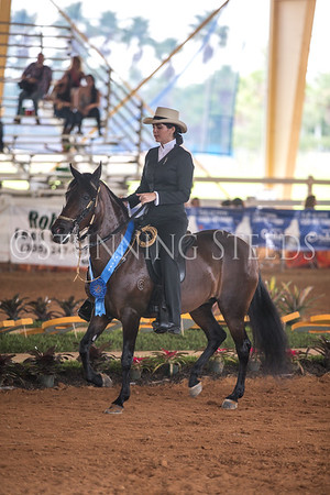 Ages 18-24 International Equitation
