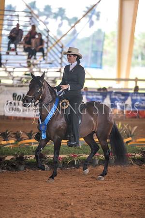 Ages 18-24 International Equitation