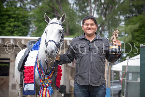 Fino Geldings Championship