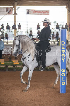 International Equitation Ages 12-17