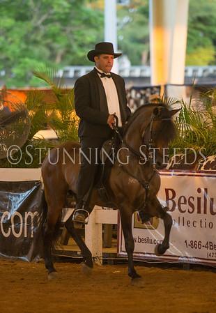 Performance Stallions