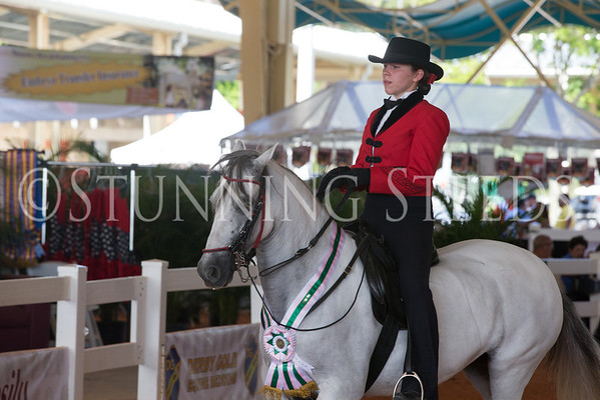 Sun-Youth Equitation Championship
