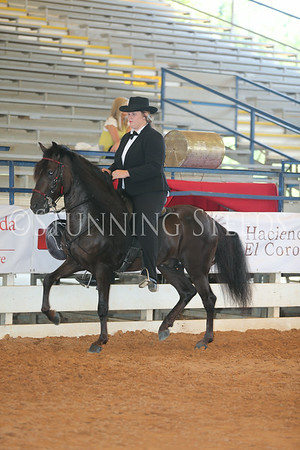 121.221Performance AO Geldings