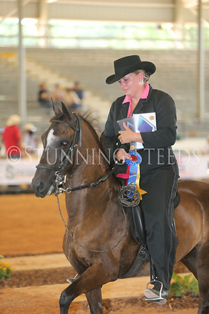 128.228Performance AO Championship Geldings