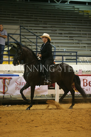 169.269Pleasure AO Geldings