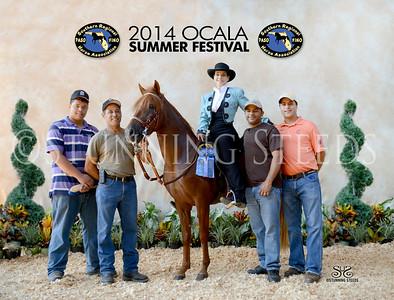 2014 SRPFHA  Charity Horse Show - Summer Festival