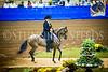 StunningSteedsPhoto-HR-MICHELLE RODRIGUEZ-MILLER-Fino Amateur Owner Fillies 4 Years