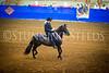 StunningSteedsPhoto-HR-0970