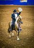 StunningSteedsPhoto-HR-0952- Invasor de La Promesa-Fino 7yr Geld