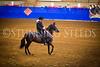 StunningSteedsPhoto-HR-0965