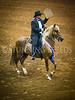 StunningSteedsPhoto-HR-0960