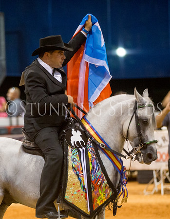 2017 Spectrum International Paso Show