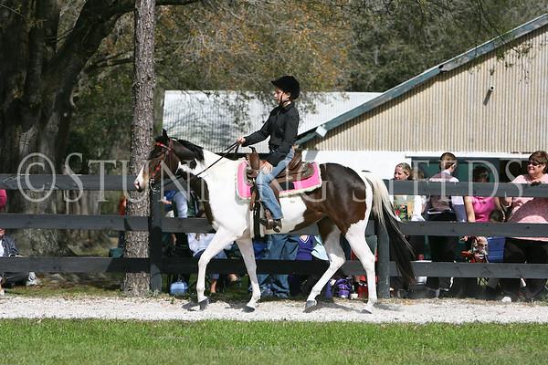 11 Western Equitation wt