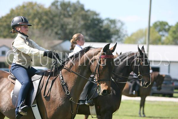19 Academy saddleseat equitation 11-13