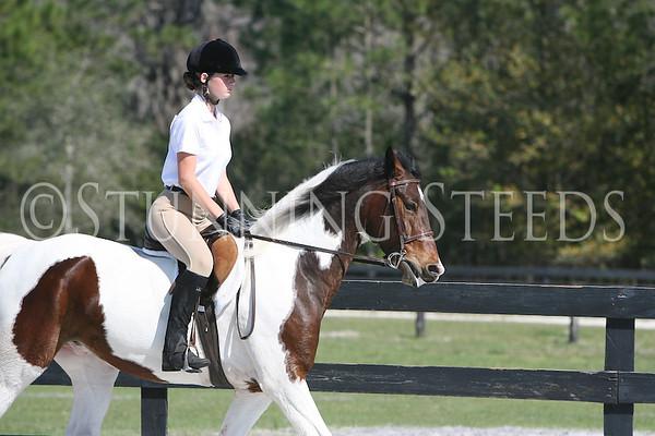 27 Huntseat Equitation wtc