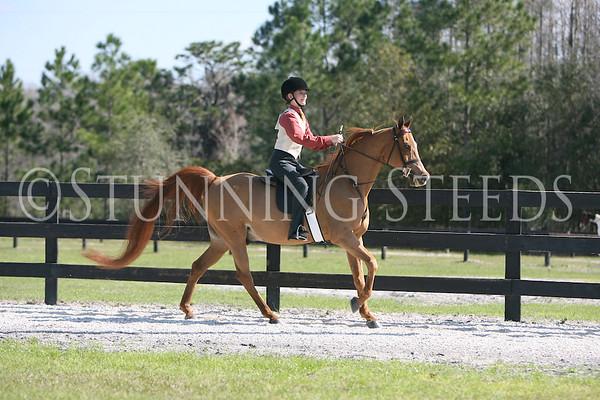 7 Academy Saddleseat showmanship 13 & Under wtc