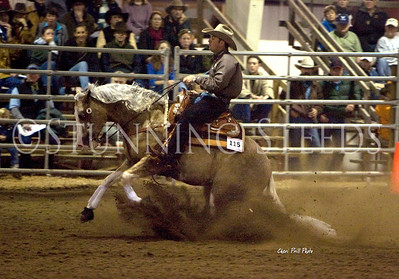 Reining Horse Competition