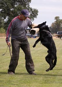 Dogstock 2009