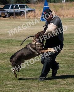 dogstock2010-3163