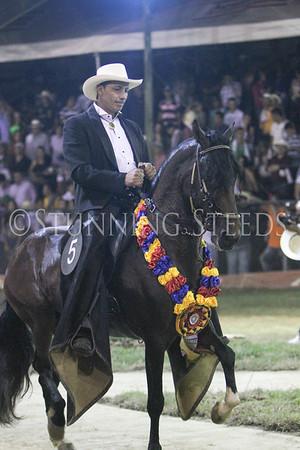 Gran Campeonato Trocha Colombiana CABALLOS