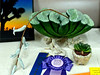 We have a lot of creative people in our group but this Terry Excell entry really stood out in Division III, - Crafts and Related Arts (painting, photography, etc).  Members spent all show explaining to guests that the big one was not a real plant but a ceramic copy of the Haworthia in the  foreground.
