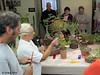 We brought in a pair of local Bonsai experts to judge the class - Ann Erb and Kris Grosuch