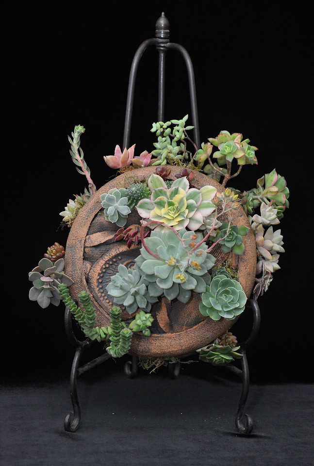 Best Dish Garden - Where the artists really meet the plants to produce living displays.  Everyone should own at least one all it takes is plants, courage and talent such as shown here by Barbara Brooks, San Luis Obispo