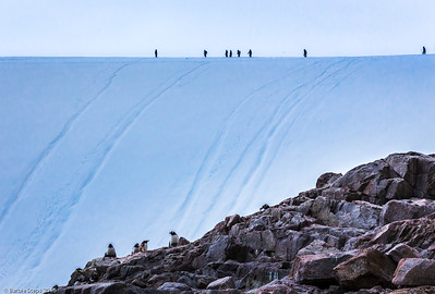 """""""Slide Hill""""  (Antarctica)  UMSL Gallery 210,  """"Far and Away""""  from June 20 through Aug 8, 2015 with the Sharp Shooters Photography Collective * June 20 , 5 pm-7 pm: Artists' Reception.  GALLERY 210 UNIVERSITY OF MISSOURI –ST. LOUIS, 44 Grobman Drive 
