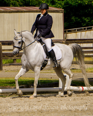 Region V sport horse Championships 2018