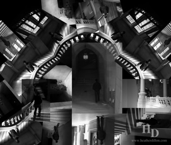 DSS #24 Emulation In pursuit of Escher.