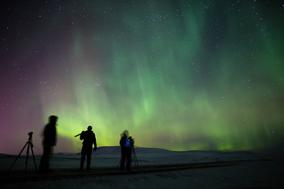 Chasing the Northern Lights     (Iceland)