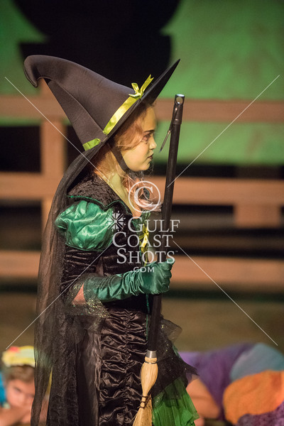 HITS Wizard of Oz Beg 2
