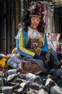 Mother Pigeon, Tina Piña Trachtenburg