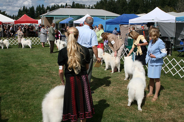 SCWS 2007 - Breed