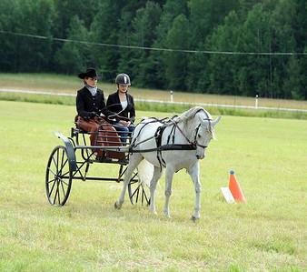 Scandinavian Arabian Sporthorse Championships 2012