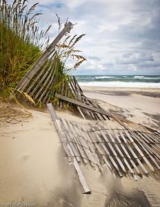 Windswept   (Outer Banks, North Carolina)