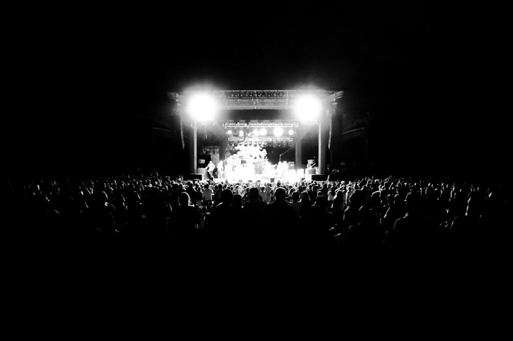 concert, portfolio
