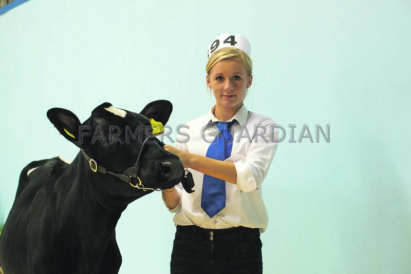 The British Friesian's champion handler was 14-year old Charlotte Gallant. All Breeds All Britain Calf Show 2013, Stoneleigh Park, Warwickshire