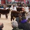 Agri-Expo038
