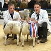 Agri sheep champs