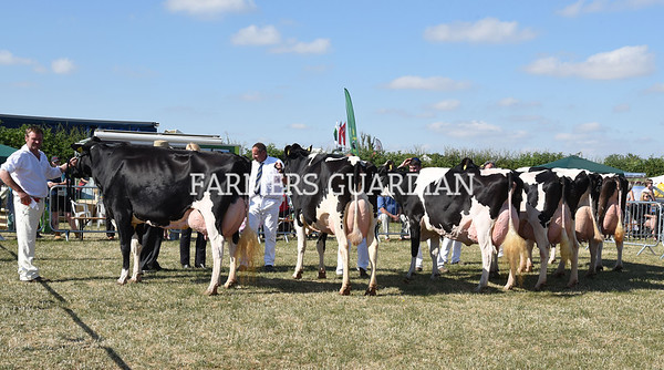 Ashby Show 2018